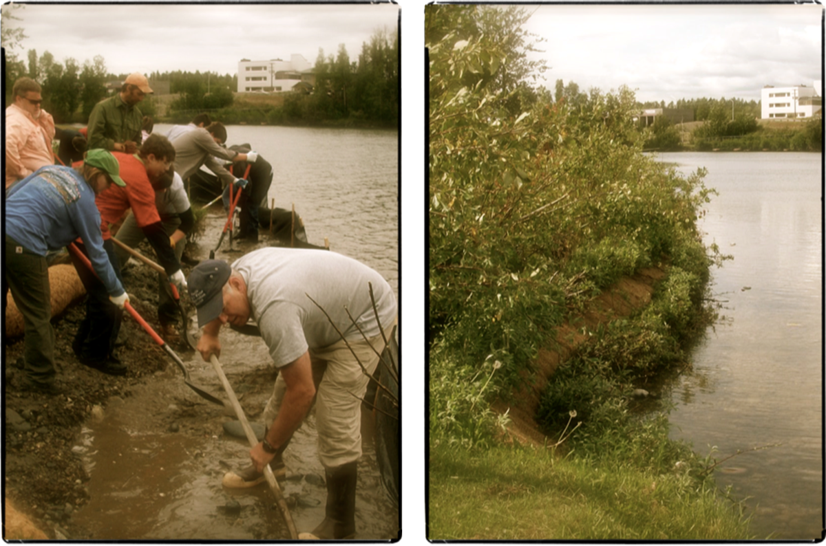 Teeland middle schoolers working on shoreline restoration
