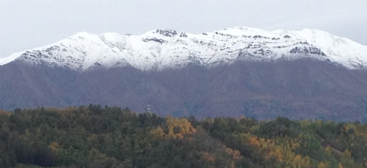 fresh snow on Arkose Ridge